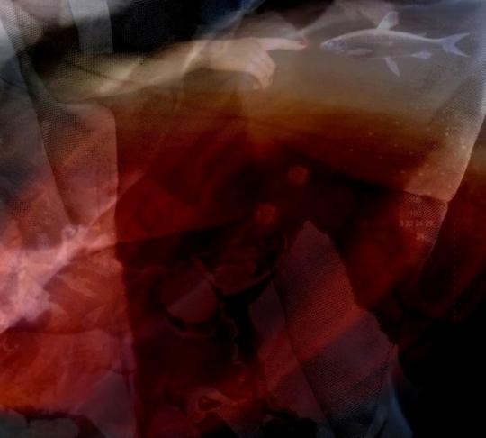 Franck Balestracci-Collage 06