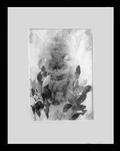 Deborah Kanfer personal artwork 1